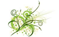 Plant [3] wallpaper 2560x1600 jpg