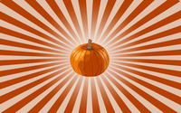 Pumpkin [2] wallpaper 2880x1800 jpg