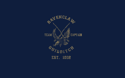 Ravenclaw Quidditch team - Harry Potter wallpaper