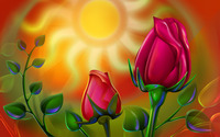 Roses [8] wallpaper 1920x1200 jpg
