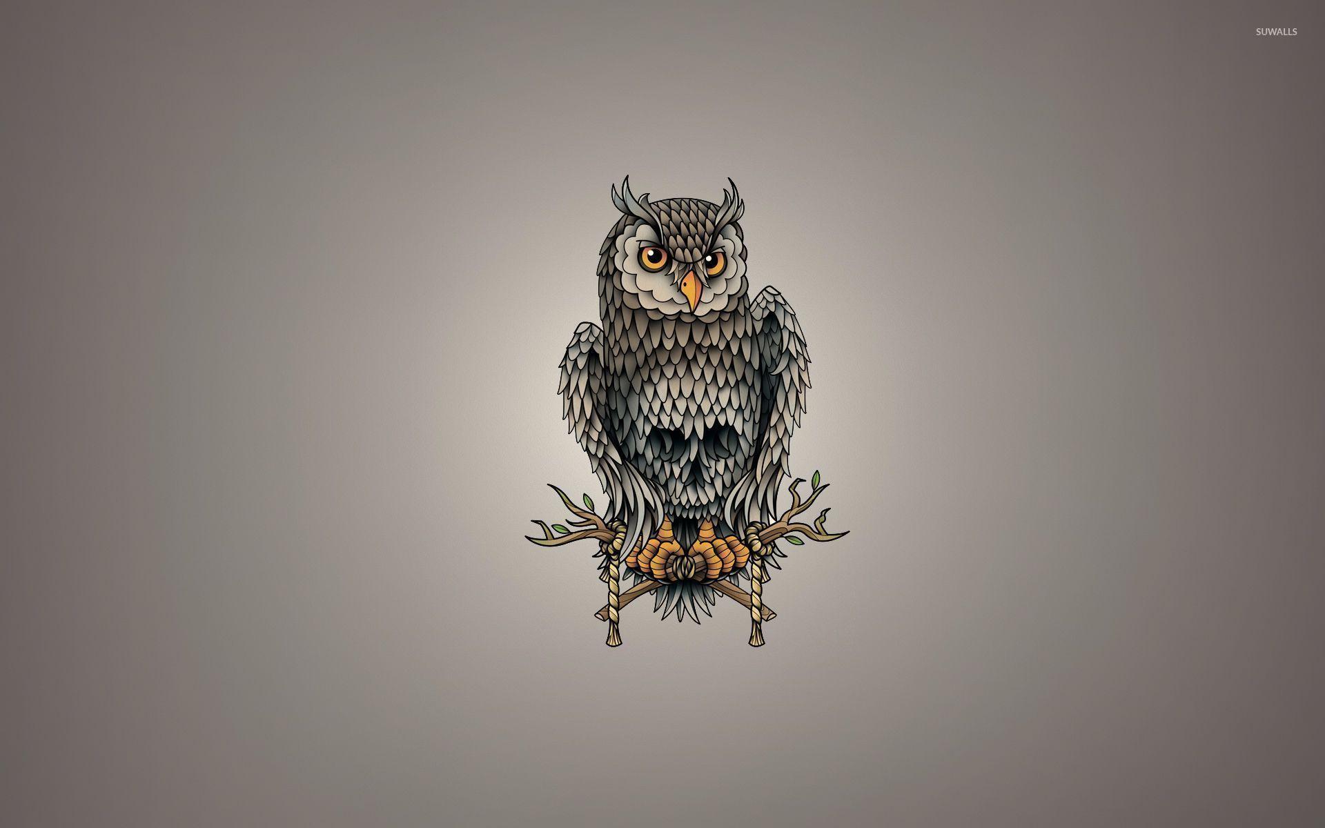 Skull owl wallpaper Vector wallpapers 52860