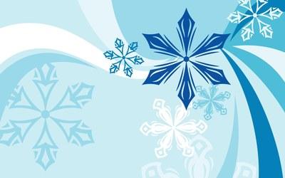 Snowflakes [11] wallpaper