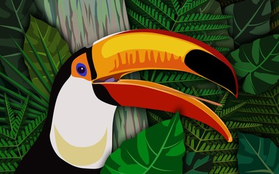 Toucan [4] wallpaper