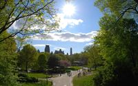 Central Park in Manhattan wallpaper 1920x1200 jpg