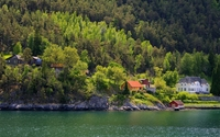 Houses in the forest on the river side wallpaper 2560x1440 jpg