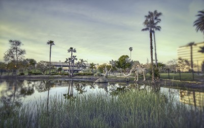 La Brea Tar Pits wallpaper