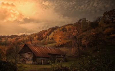 Old barn in autumn forest wallpaper