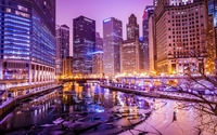 Purple lights in Chicago wallpaper 1920x1200 jpg
