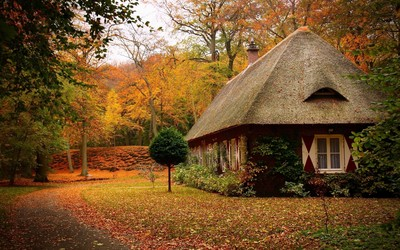 Small house in an autumn forest wallpaper