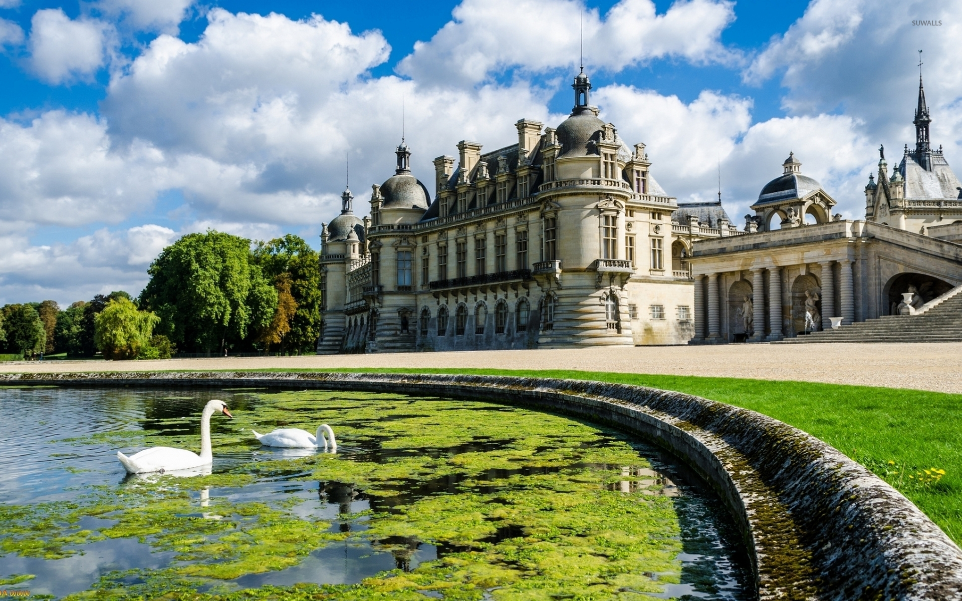 swans in the lake by the chateau de chantilly wallpaper. Black Bedroom Furniture Sets. Home Design Ideas