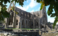 Tintern Abbey wallpaper 2560x1600 jpg