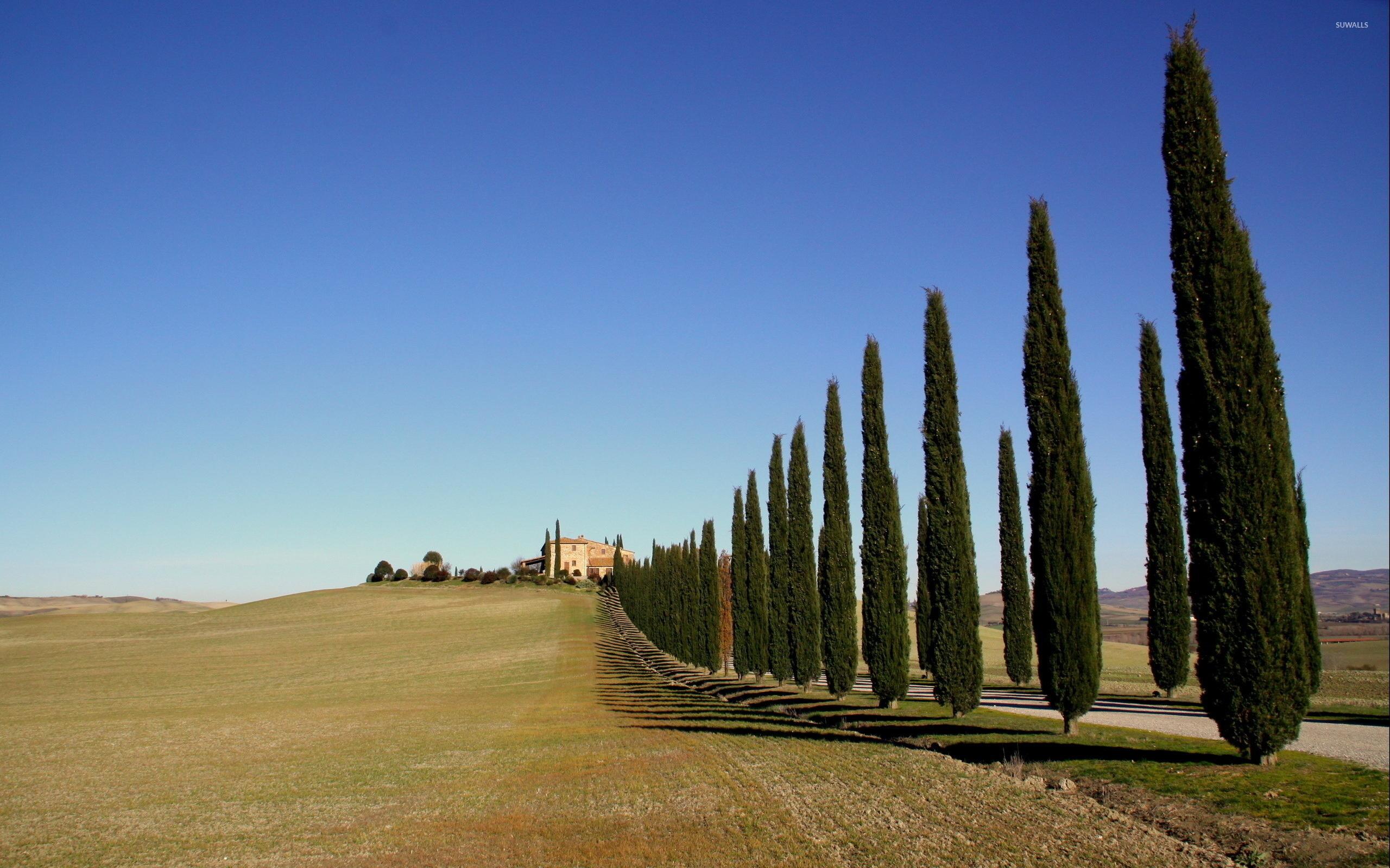 Tuscany 2 Wallpaper World Wallpapers 41737