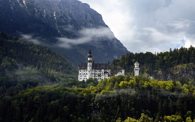 View of the Neuschwanstein Castle from far wallpaper