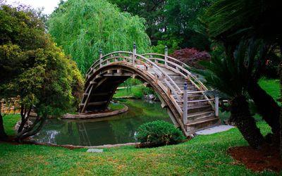 Wooden bridge in a japanese garden wallpaper