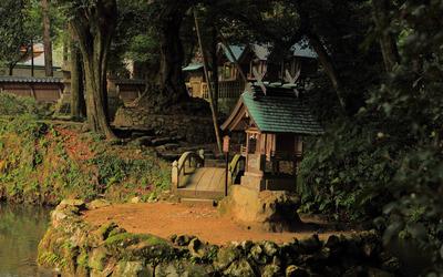 Wooden bridge in Japanese garden wallpaper